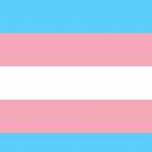 Verbotsparteien CSU und SPD: Weg mit dem Entwurf zum Transsexuellengesetz!